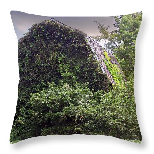 2d Throw Pillow featuring the photograph Growing Pains by Brian Wallace