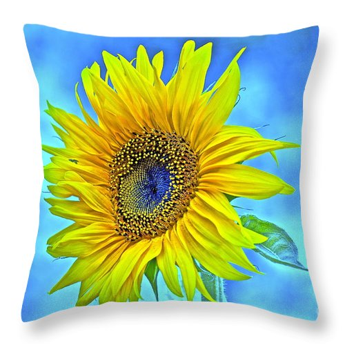 Sunflower Throw Pillow featuring the photograph Growth Renewal And Transformation by Gwyn Newcombe