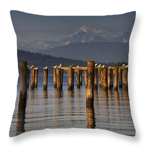 Guemes Channel Trail Throw Pillow featuring the photograph Guemes Channel Trail Panorama by Mark Kiver