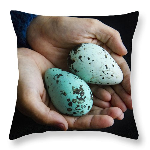 Eggs Throw Pillow featuring the photograph Guillemot Egg by For Ninety One Days