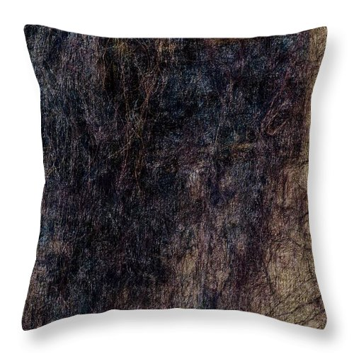 Dark Window Throw Pillow featuring the painting Hairy Window 1 by Yevgeni Kacnelson