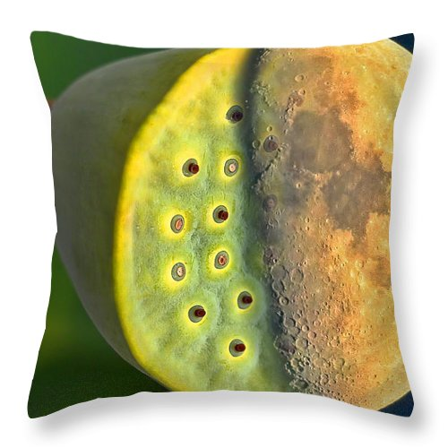 Canada Throw Pillow featuring the photograph Half Moon In Half Lotus Position by Gary Holmes