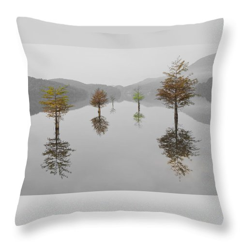 Appalachia Throw Pillow featuring the photograph Hanging Garden by Debra and Dave Vanderlaan