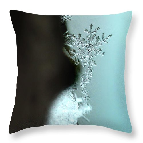 Macro Throw Pillow featuring the photograph Hanging Out by Rob Blair