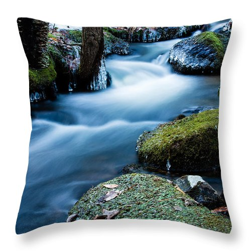 Arctic Throw Pillow featuring the photograph Hanson Brook by Dawna Moore Photography