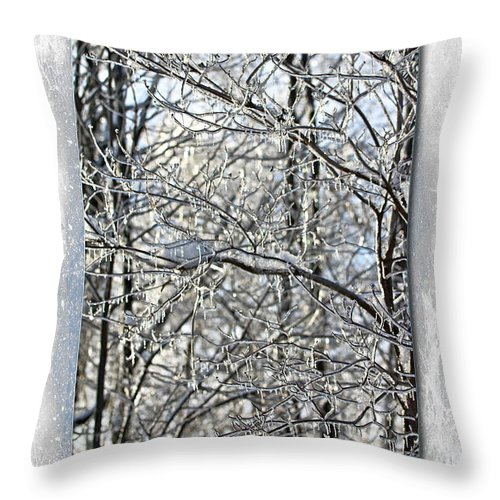 Holiday Throw Pillow featuring the photograph Happy Holidays Greeting - Icicles On Trees by Mother Nature