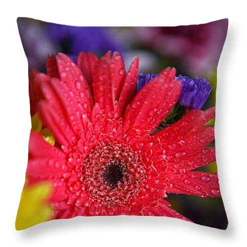 Mother's Day Card Throw Pillow featuring the photograph Happy Mother's Day by Erika Weber
