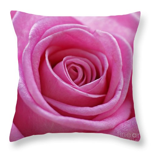 Pink Throw Pillow featuring the photograph Happy Pink by Carol Lynch