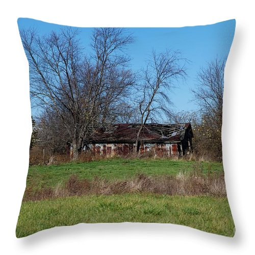 Fall Throw Pillow featuring the photograph Hard Life by Joseph Yarbrough