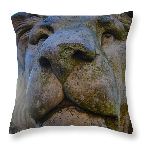Harlaxton Throw Pillow featuring the photograph Harlaxton Lions by Tiffany Erdman