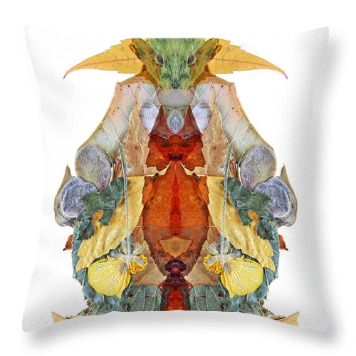 Discover The Magical World Throw Pillow featuring the photograph Harlydav by Luc Bovet