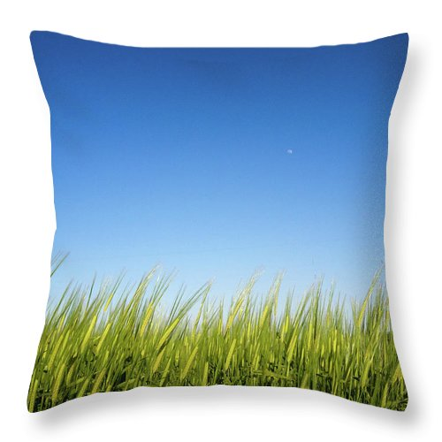 Tranquility Throw Pillow featuring the photograph Harvest Moon by © Peter Lourenco