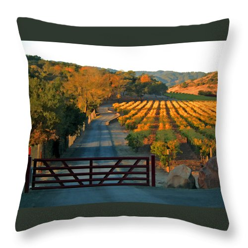 Landscape Throw Pillow featuring the photograph Harvest Morning by Ann Nunziata