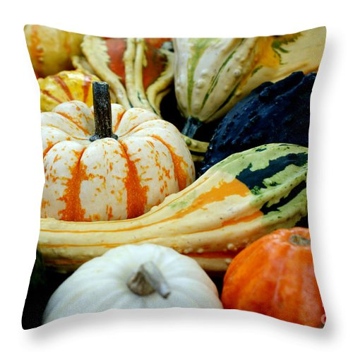 Gourds Throw Pillow featuring the photograph Harvest by Valerie Fuqua