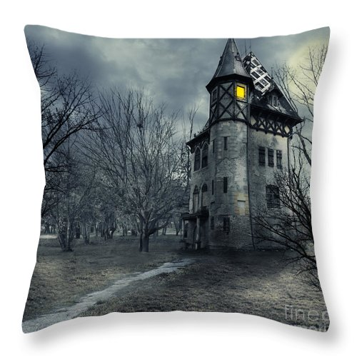 House Throw Pillow featuring the photograph Haunted house by Jelena Jovanovic