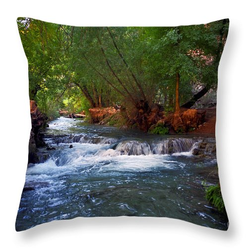 Arizona Throw Pillow featuring the photograph Havasu Creek by Kathy McClure