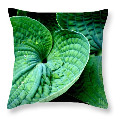Hosta Throw Pillow featuring the photograph Have A Heart by Valerie Fuqua
