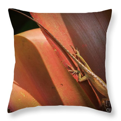 America Throw Pillow featuring the photograph Hawaiian Lizard by Inge Johnsson