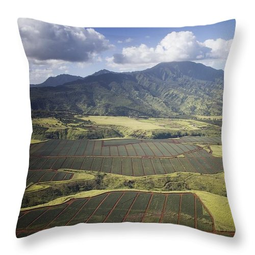 Carol Highsmith Throw Pillow featuring the digital art Hawaiian Pineapple Fields by Carol Highsmith