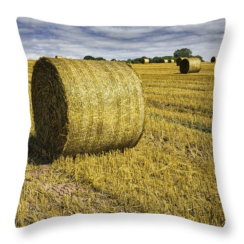 Wales Throw Pillow featuring the photograph Hay Bales by Fran Gallogly