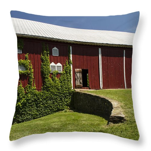 Landscape Photographs Throw Pillow featuring the photograph Hay Barn by Guy Shultz