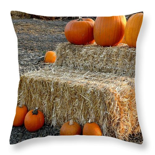 Farming Throw Pillow featuring the photograph Hay Steps by Michael Gordon