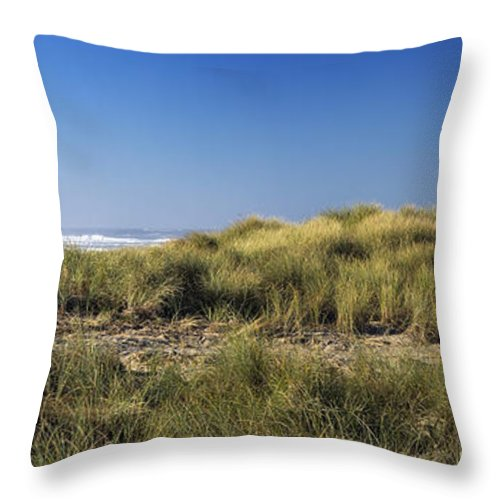 Grass Throw Pillow featuring the photograph Haystack And Sea Grass by Paul Riedinger