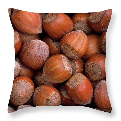 Mp Throw Pillow featuring the photograph Hazelnuts by Duncan Usher