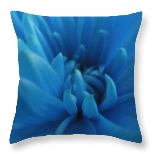 Rose Throw Pillow featuring the photograph Hazy Shade Blue Mum by Tina M Wenger