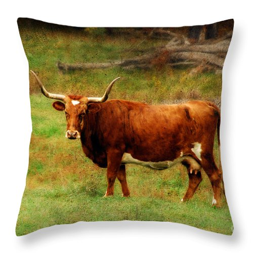 Cow Throw Pillow featuring the photograph Heading For The Barn by Lois Bryan