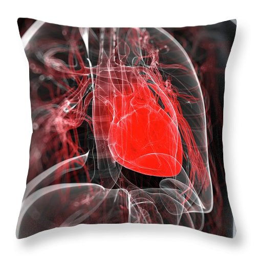 Physiology Throw Pillow featuring the digital art Heart Anatomy, Artwork by Sciepro