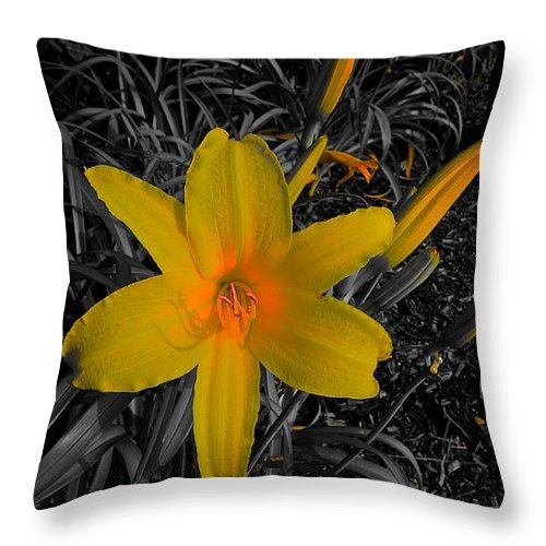 Garden Throw Pillow featuring the photograph Heart Glow by Tim G Ross