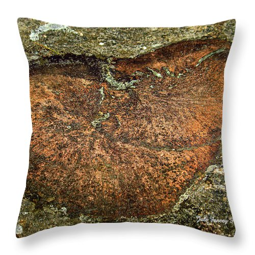 Photography Throw Pillow featuring the photograph Heart On The Rocks by Jale Fancey