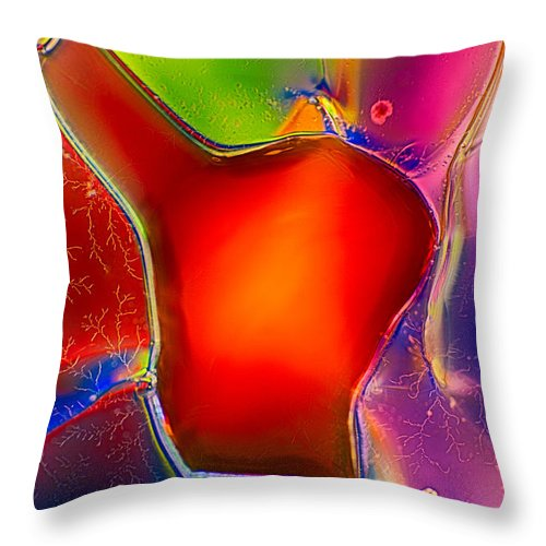 Abstract Throw Pillow featuring the photograph Hearts by Omaste Witkowski