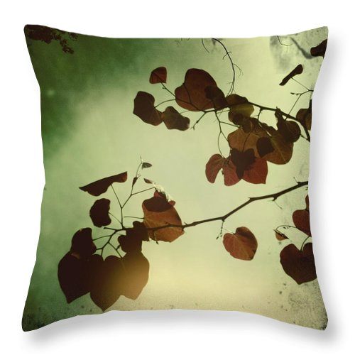 Photography Throw Pillow featuring the photograph Hearts by Sarah Coppola