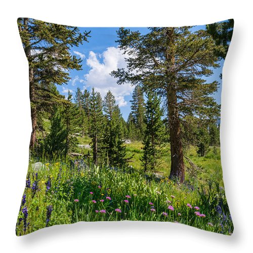 Tioga Pass Throw Pillow featuring the photograph Heaven In The High Country by Lynn Bauer