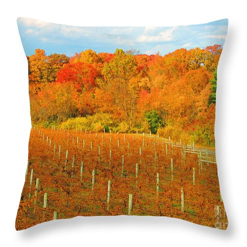 Vineyard Throw Pillow featuring the photograph Heavenly Vineyard by Marian DeSalvo-Rodgers