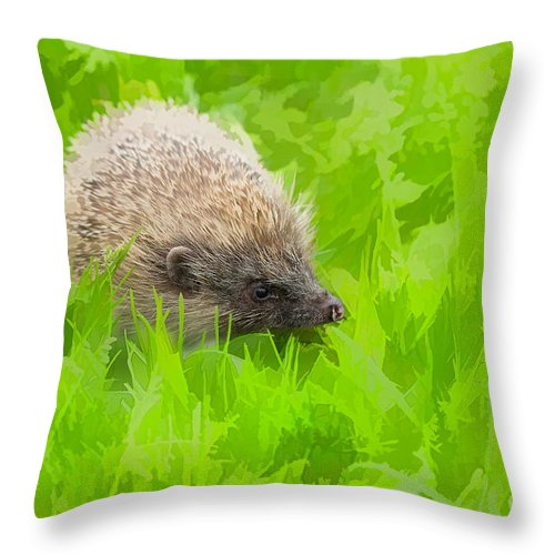 Hedgehog Dreams Throw Pillow For Sale By Louise Heusinkveld