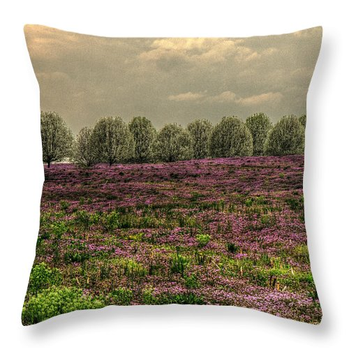 Henbit Up To The Bradfords Throw Pillow featuring the photograph Henbit Up To The Bradfords by William Fields