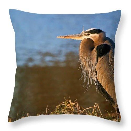 Blue Heron Throw Pillow featuring the photograph Heron On The Lake by Athena Mckinzie