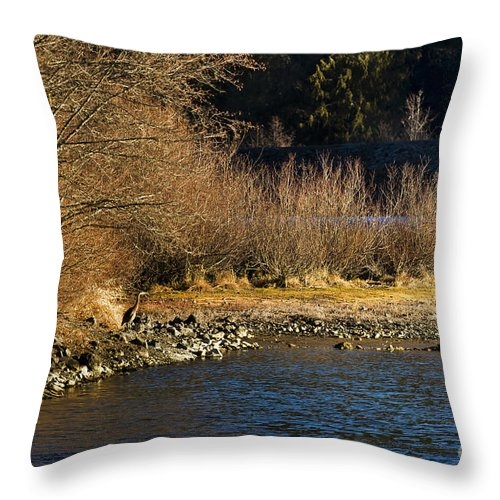 Heron Throw Pillow featuring the photograph Heron On The Shore by Belinda Greb