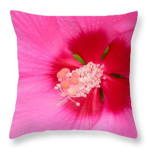 Hisbiscus Flower Card Throw Pillow featuring the photograph Hibiscus by Cynthia Wallentine