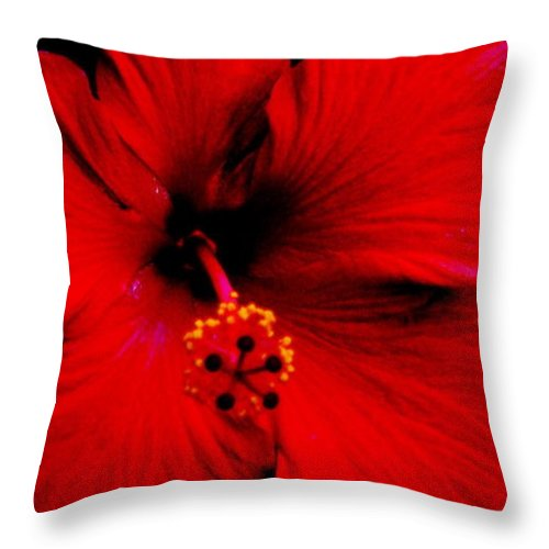 Hibiscus Throw Pillow featuring the painting Hibiscus by Ethel Rossi
