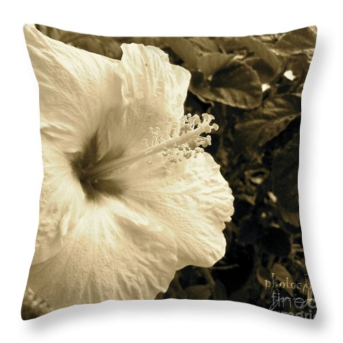 Hibiscus Throw Pillow featuring the photograph Hibiscus by Jamie Johnson