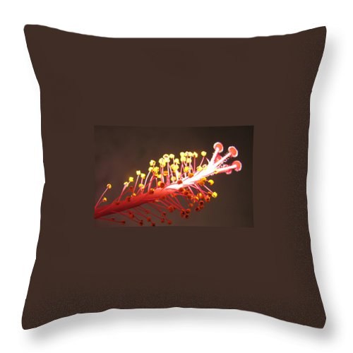 Hibiscus Throw Pillow featuring the photograph Hibiscus by Mary Ellen Mueller Legault