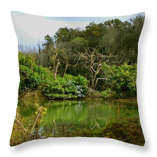 Limestone Throw Pillow featuring the photograph Hidden Beauty by DigiArt Diaries by Vicky B Fuller