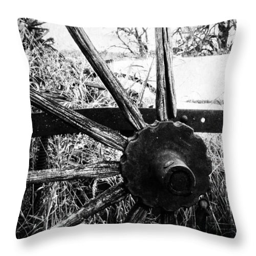 Barn Throw Pillow featuring the photograph Hidden In Grass by The Artist Project