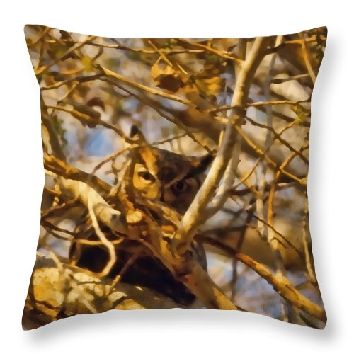 Throw Pillow featuring the photograph Hidden Owl by Cathy Anderson