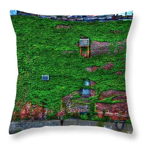 High Line Park Throw Pillow featuring the photograph High Line Ivy by Randy Aveille
