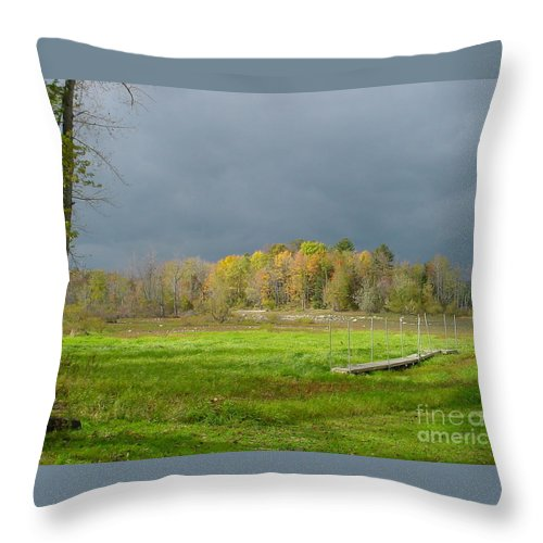 Fall Throw Pillow featuring the photograph Highlights by Nancie Johnson